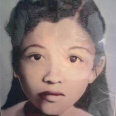 Kỷ niệm ngày Thương binh liệt sĩ: Chiếc cặp ba lá của nữ liệt sĩ Lê Thị Ngọc Tiến