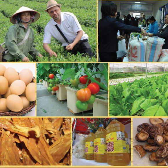 Chợ quê – Nơi hội tụ các đặc sản địa phương nổi tiếng